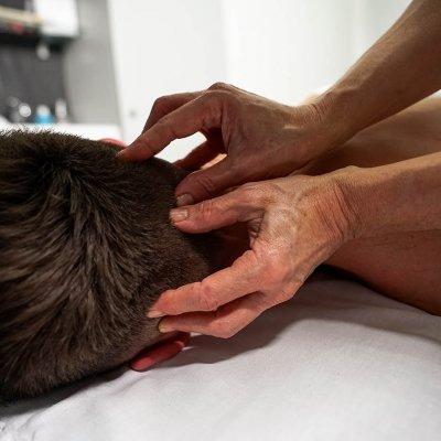 BS-massage-sheya-golova-1.jpg
